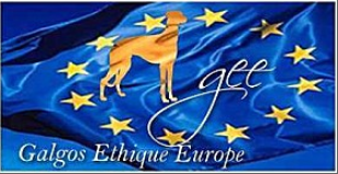 Association Galgos Europe